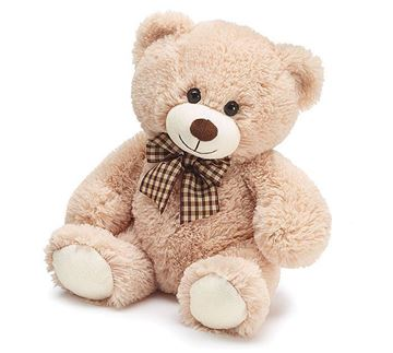"""Picture of Teddy Bear 12"""""""